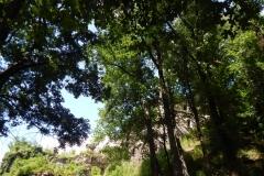 Руїни замку у Хусті