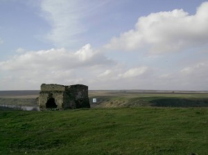 Башта жванецького замку