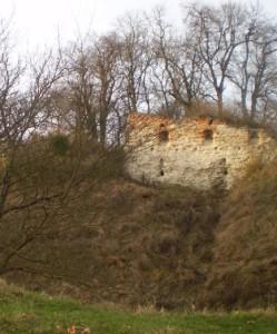 Стіна Старостинського замку