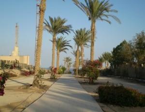 Типовий єгипетський пейзаж