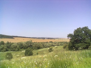 Село Узин