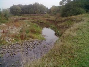 Ріка Павлівка біля села Павлівка