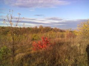 Дністровська осінь