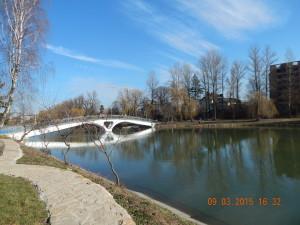 Острів на міському озері в Івано-Франківську