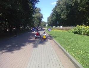 Доріжки у міському парку