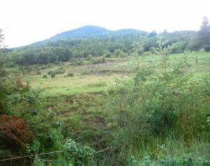 Карпати поблизу Маняви