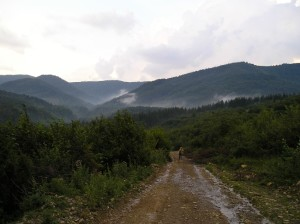 Карпати у Богородчанському районі