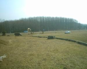 Ліс - музей під відкритим небом в Крилосі