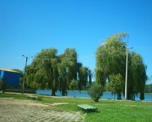 Міське озеро в Івано-Франківську
