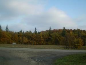 Осінь біля Галича