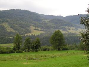 Карпати біля Маняви