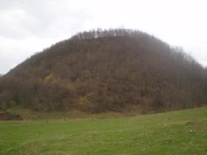 Городище на горі біля села Петрів