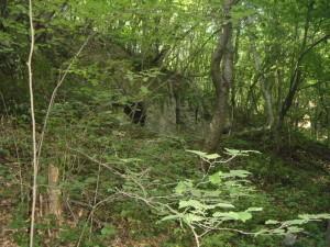 Печера біля Одаїва в урочищі Городище