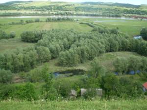 Заплави біля Дністра в Нижневі