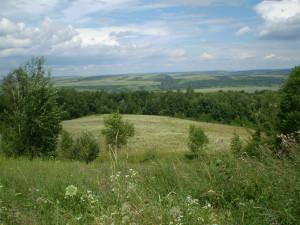Долина Дністра біля Буківної