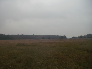 Пейзаж у Марківцях Тисменицького району