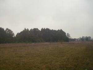 Село Марківці
