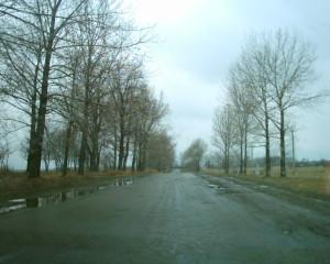 Дорога з Рожнятова до Перегінська