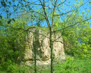 Скеля Раковецького замку