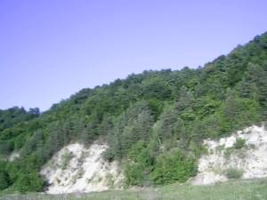 Ландшафт біля Петрилова