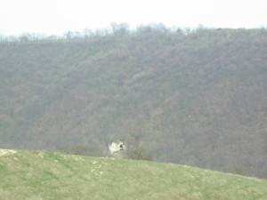 Скельний монастир в селі Стінка навпроти села Делева