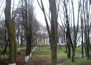 Палац і парк у Більшівцях - можливо на місці палацу був замок