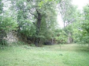 У замковому подвір'ї - сад