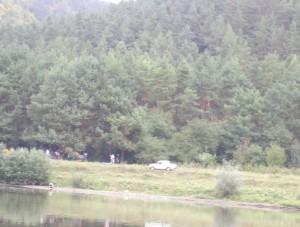 Відпочиваючі біля Дністра - тут соснові ліси