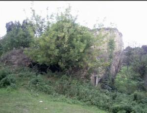 Замкова брама і прибрамний палац у Чернелиці