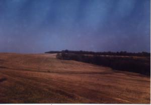 Біля хутора Антонівка, фото 2000 року