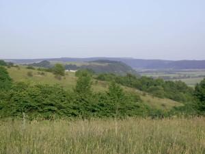 Дністровські пагорби поблизу Золотої Липи