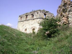 Замковий рів Пнівського замку у місті Надвірна