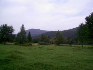 Горгани - Карпати у Рожнятівському районі
