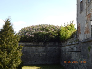 Бастіон Жовківського замку