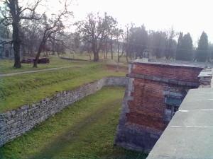 Вид з фортечного муру Підгорецького замку