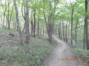 Велосипедні доріжки в Козаковій Долині