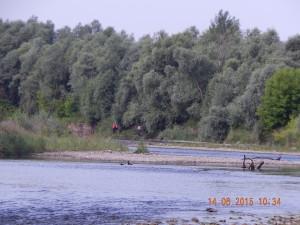 Рибалки на Бистриці Солотвинській в районі Клузова