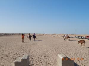 Пустельний пейзаж