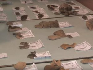 Матеріали розкопок на Мостищині