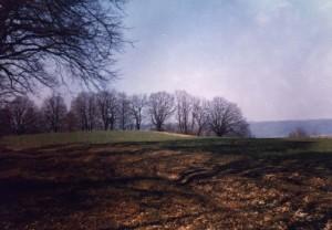 Палеолітичне поселення біля Буківної в Івано-Франківській області