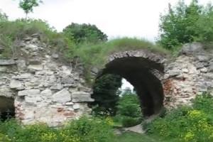 Брама залозецького замку