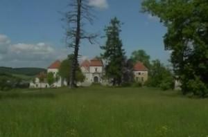 Свіржський замок здалеку