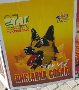 Виставка собак у 2015 році проходила під лозунгом Вірне серце