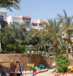 Недорогие отели в Египте будут еще дешевле при покупке горящих путевок