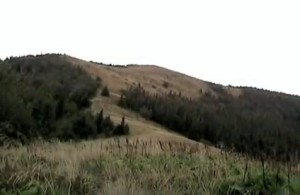 Карпатська гора Беньки у Сколівському районі