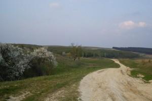 Лідихівський пейзаж