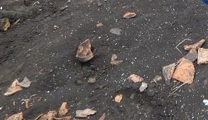 Трипільска кераміка на полі, розоране житло