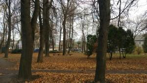 Будинок з колонами - колишній музей Гриневичів, зараз стоїть пусткою