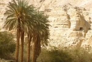 Печери в Кумрані