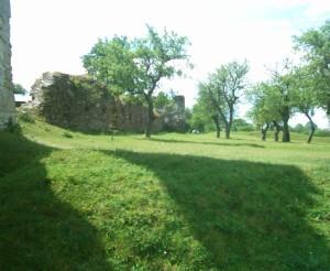 Стіна замку у селі Підзамочок з боку Стрипи і сад